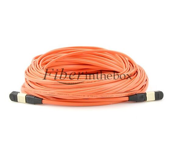 Fiberinthebox MTP MPO Cables